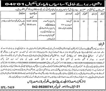 Agriculture Directorate Punjab Basic Scale Jobs