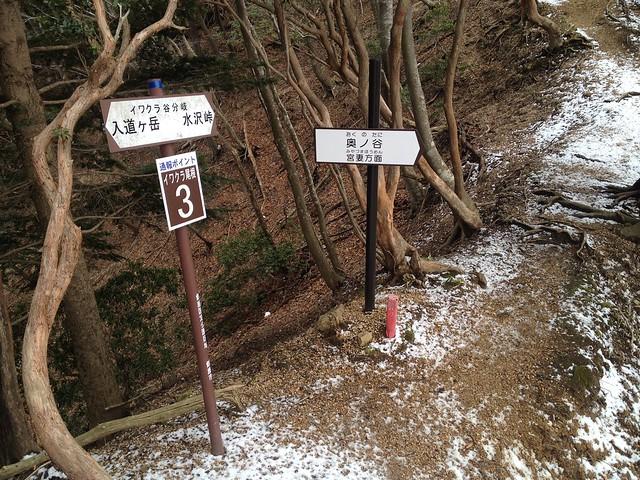 入道ヶ岳 奥ノ谷 イワクラ谷分岐
