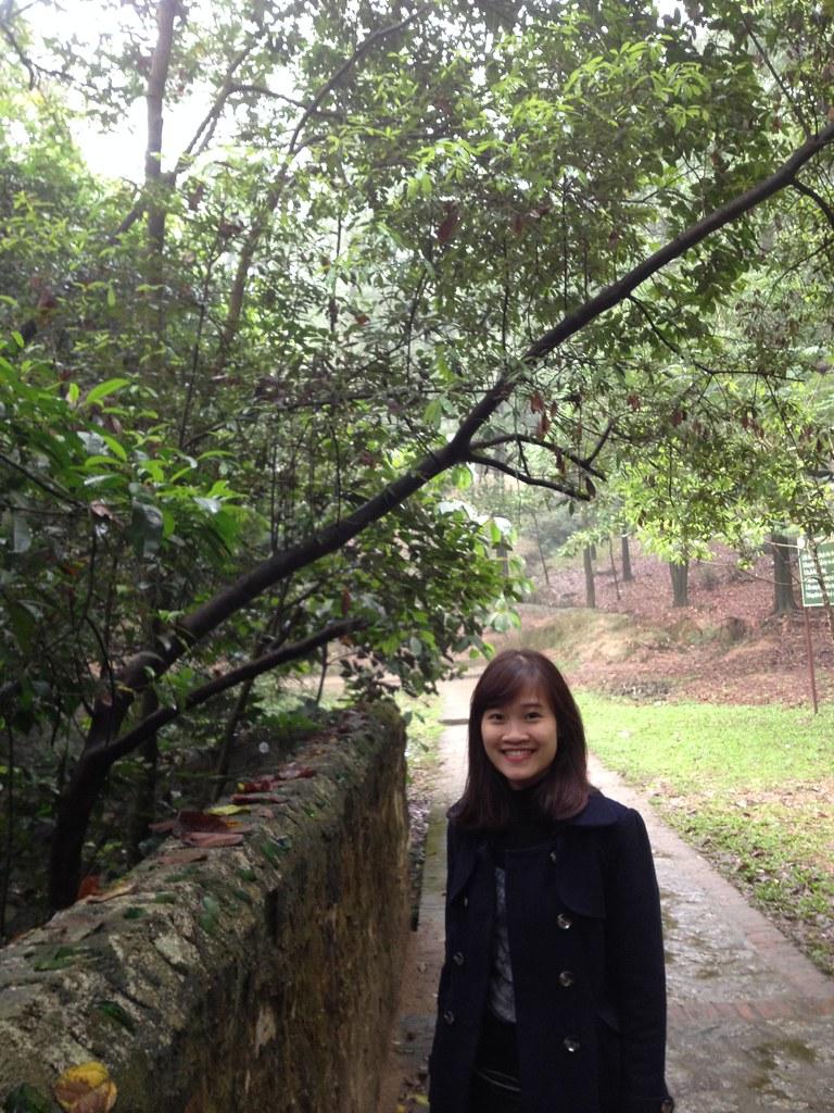 Bo Da Pagoda (100)