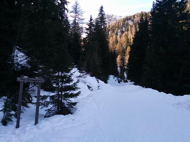 """""""Pan Kressprunn"""" Aufstieg Kalksteinjöchl durch den Wald"""