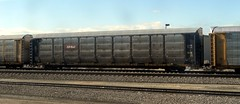 CP Rail/TTX Autorack 983215