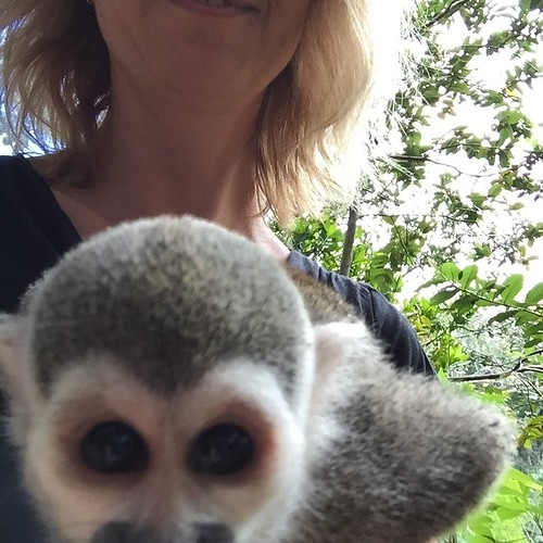 My attempt at a selfie at Monkey Land
