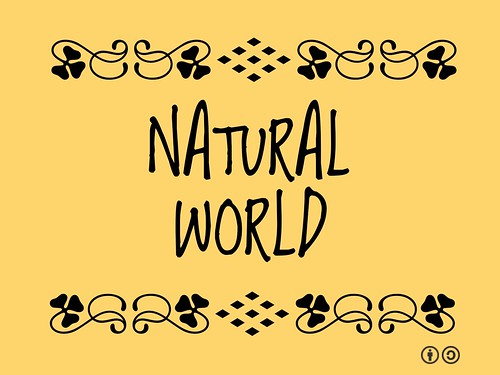 Buzzword Bingo: Natural World