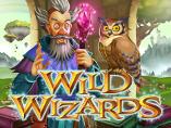 Online Wild Wizards Slots Review