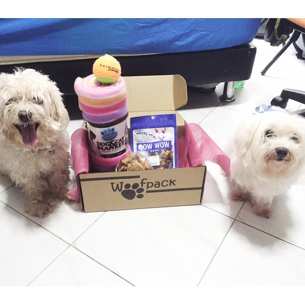 Woofpack Singapore