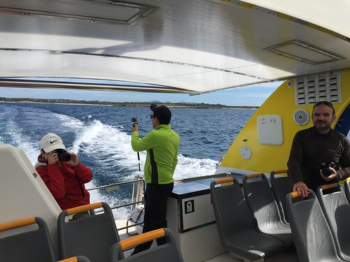 Excursión a Cabrera en barca en Click-mallorca.com