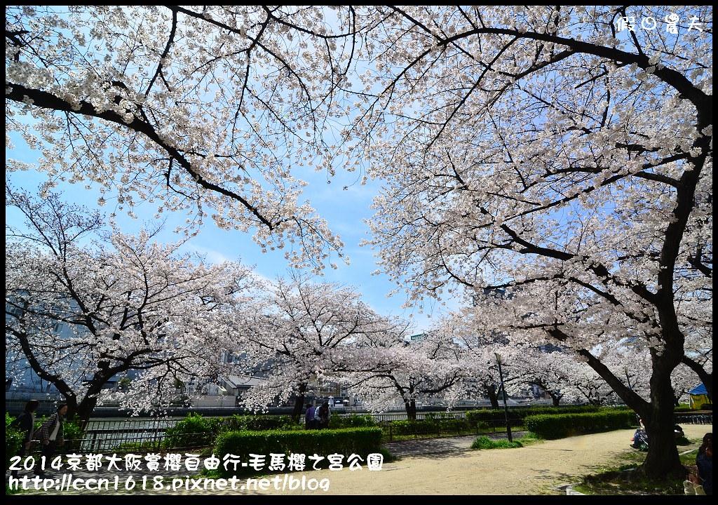 2014京都大阪賞櫻自由行-毛馬櫻之宮公園DSC_2059