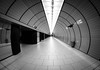 Tunnel _162/365_