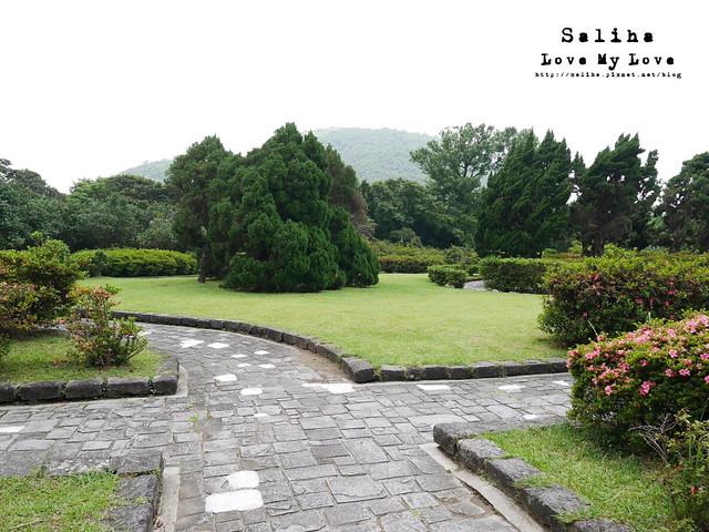 陽明山踏青一日遊景點 第二停車場杜鵑茶花園
