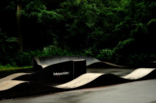 Skater Tannenwald