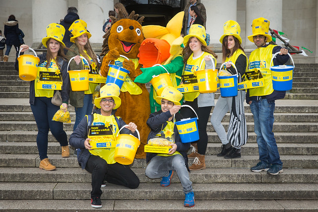 Great Daffodil Appeal highlights 2015