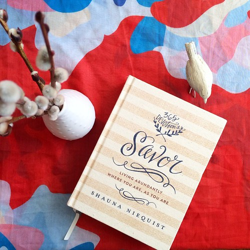 Savor: Living Abundantly Where You Are, As You Are. A devotional by Shauna Niequist