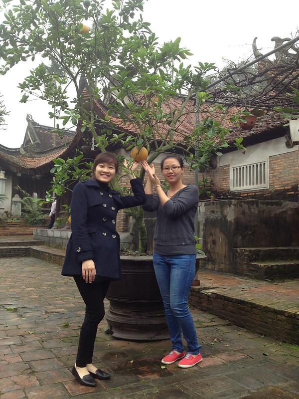 Vinh Nghiem Pagoda (86)
