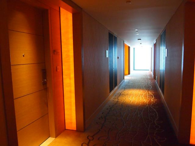 P4179029 Marina Bay Sands Hotel(マリーナ・ベイ・サンズ・ホテル)