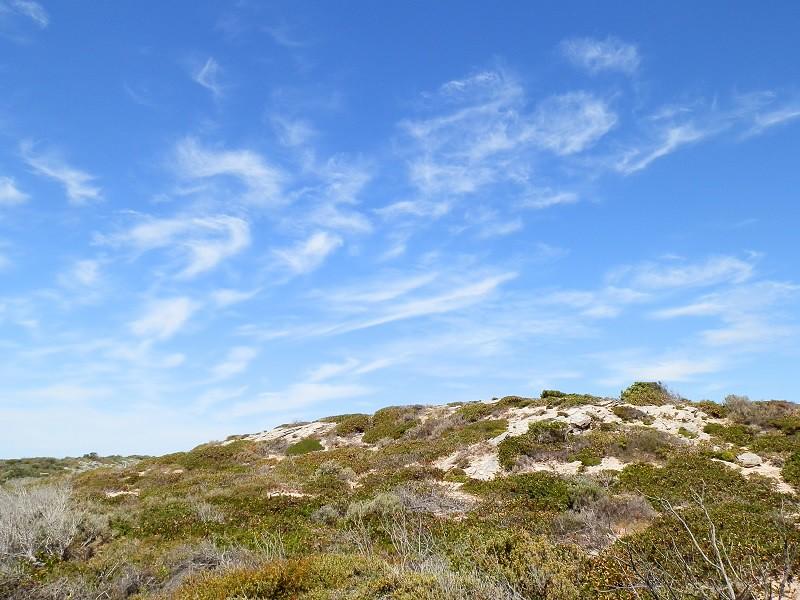 Dunes, Innes National Park