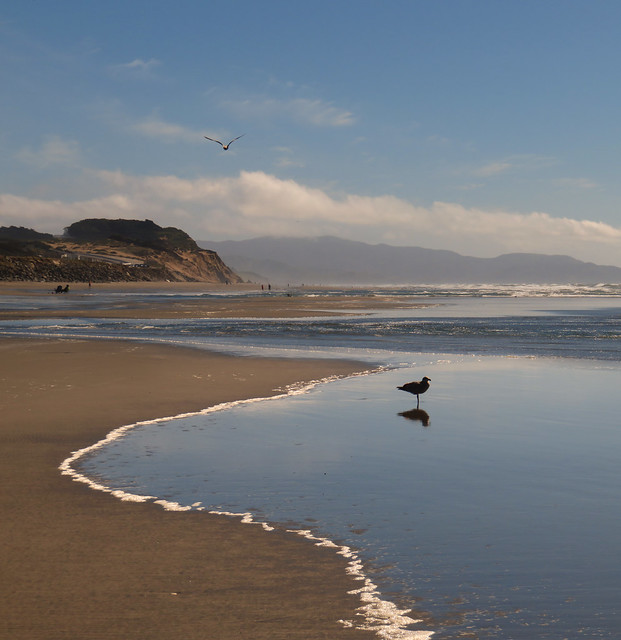 Ocean Beach, San Francisco.  March 17, 2015