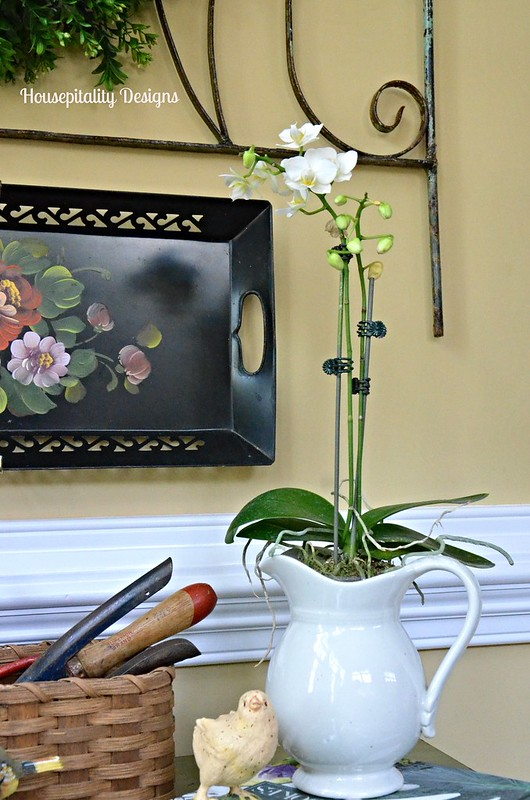 Orchid in vintage pitcher-Housepitality Designs