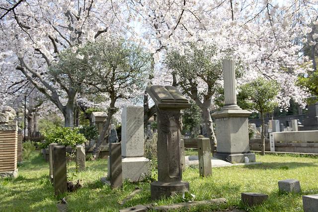 染井霊園 Somei Cemetery 外人墓地