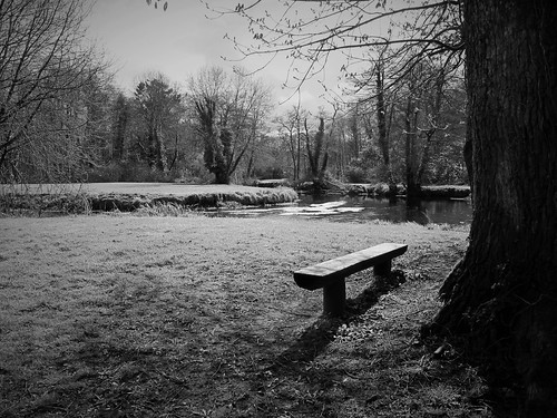 trees ireland blackandwhite bw irish rural bench landscape outdoors countryside shadows view cork scenic hbm donerailepark riverawbeg