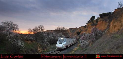 Primavera ferroviaria II