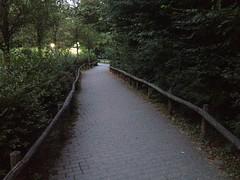 Center Parcs