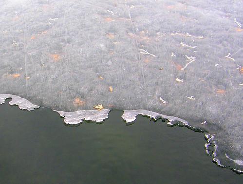 Icy coastline