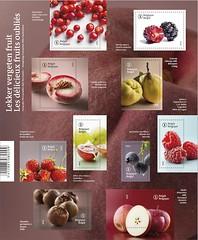 13 FRUITS OUBLIÉS feuillet