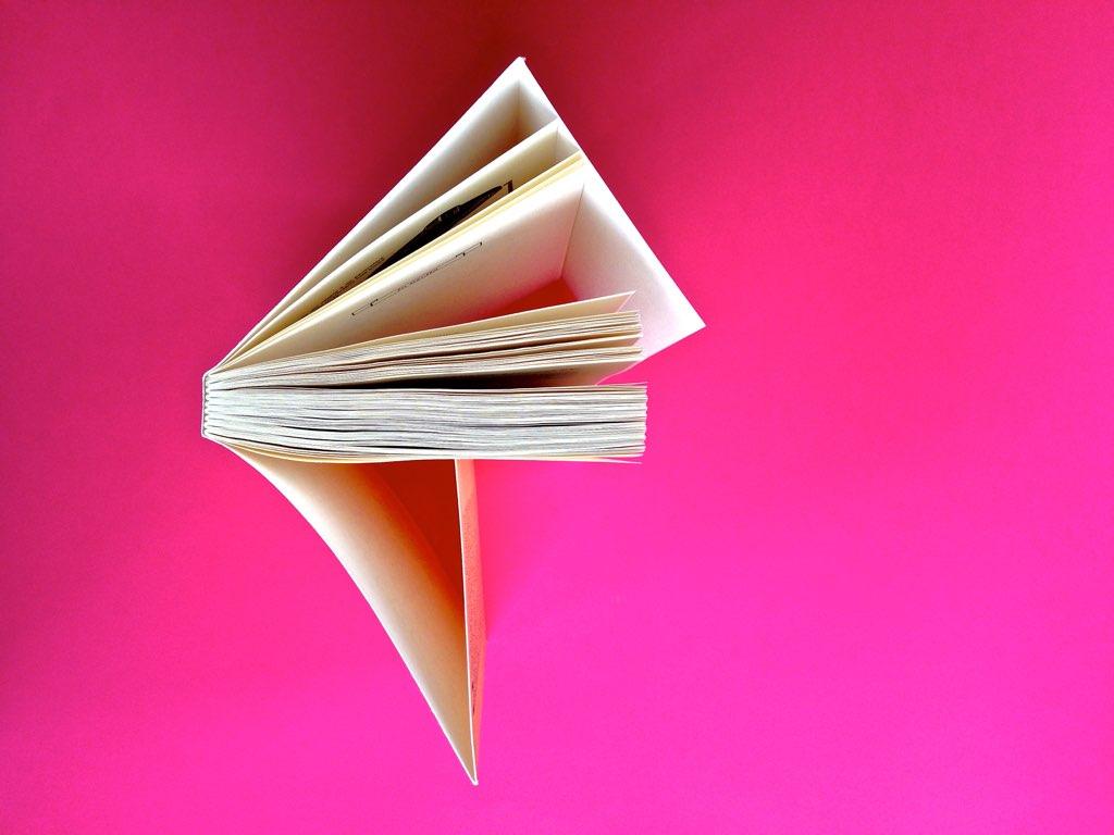 La stella del vespro, di Colette. Del Vecchio Editore 2015. Art direction, cover, illustrazioni, logo design: IFIX | Maurizio Ceccato. Taglio superiore (part.), 1