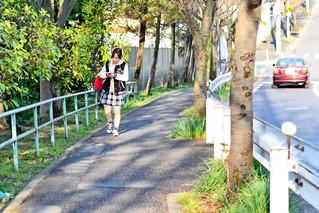 Slope in Spring : 春の坂道