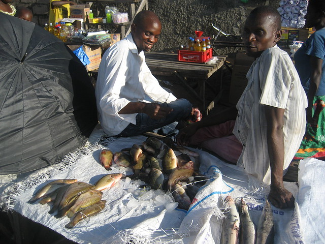Small dried fish being sold at the market in Mongu, Zambia. Photo By Kate Longley