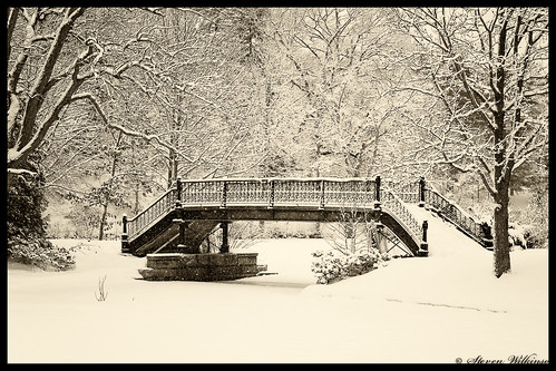 Roger William Park Bridge by Steven Wilkinson via I {heart} Rhody