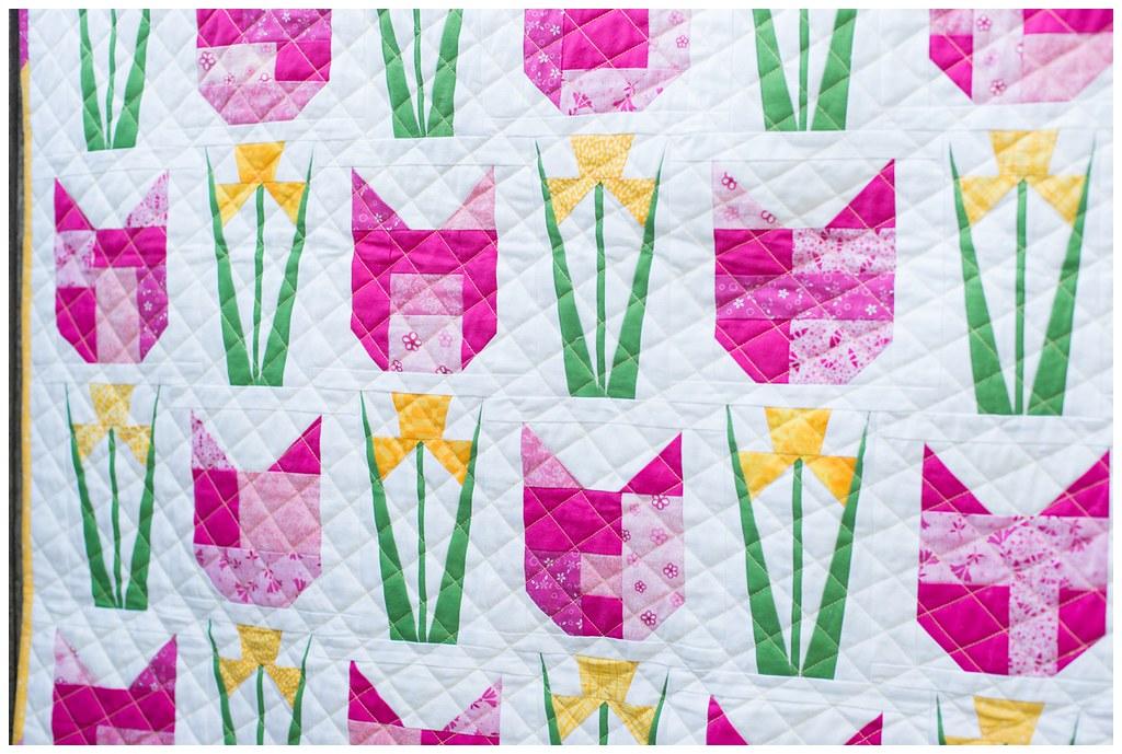 daffodilcats-3