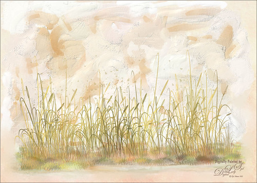Image I painted of some reeds on a textured background
