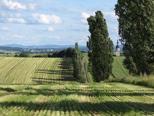Landschaftsbilder Flur Langenreinsdorf