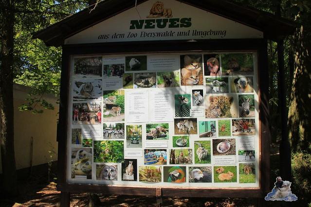 Zoo Eberswalde 04.06.2011 4
