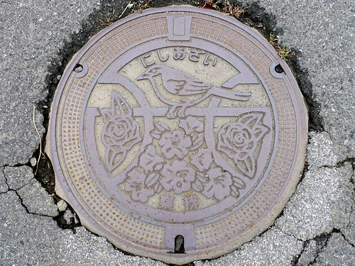 Nishiazai Shiga, manhole cover (滋賀県西浅井町のマンホール)
