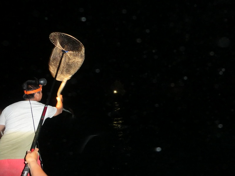 17度C環島-蘭嶼飛魚季體驗- (19)