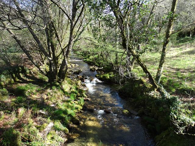 Río Barbeira en A Lama