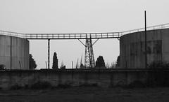 Port de saint-Gilles : lignes