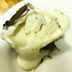 breakfast(0.0), coconut(0.0), whipped cream(0.0), produce(0.0), icing(0.0), cream(0.0), ice cream(1.0), buttercream(1.0), food(1.0), dish(1.0), cream cheese(1.0), dairy product(1.0), dessert(1.0),