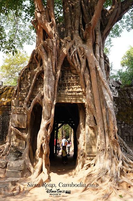 Siem Reap, Cambodia Day 4 - 06 Ta Som
