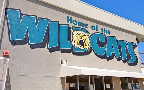 Arroyo Vista Wildcats - final