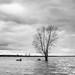 Alone by MrProxy (Janis Janums - janisjanums.com )