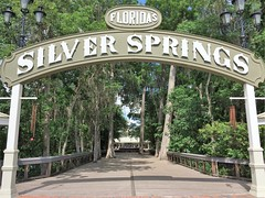 Florida's Silver Springs