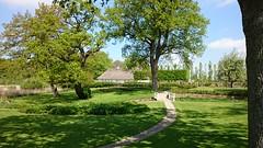 Schloss Gravenstein09
