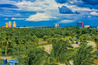 View of downtown Fort Myers, Florida U.S.A. / The City of Palms