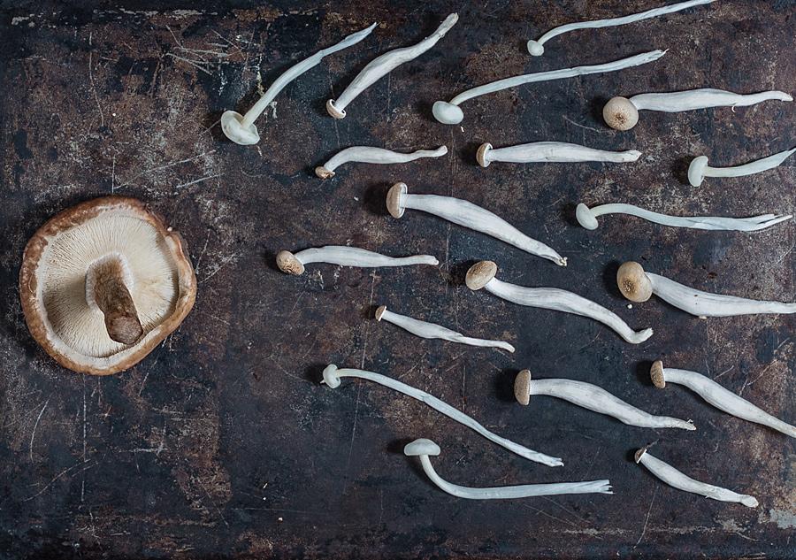 Mushrooms | Lau Sunday cooks