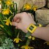 Polymer clay buckle bracelet