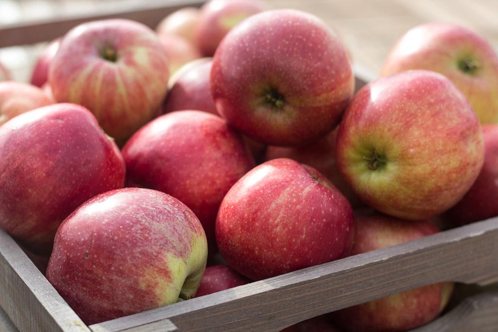 Æblemost