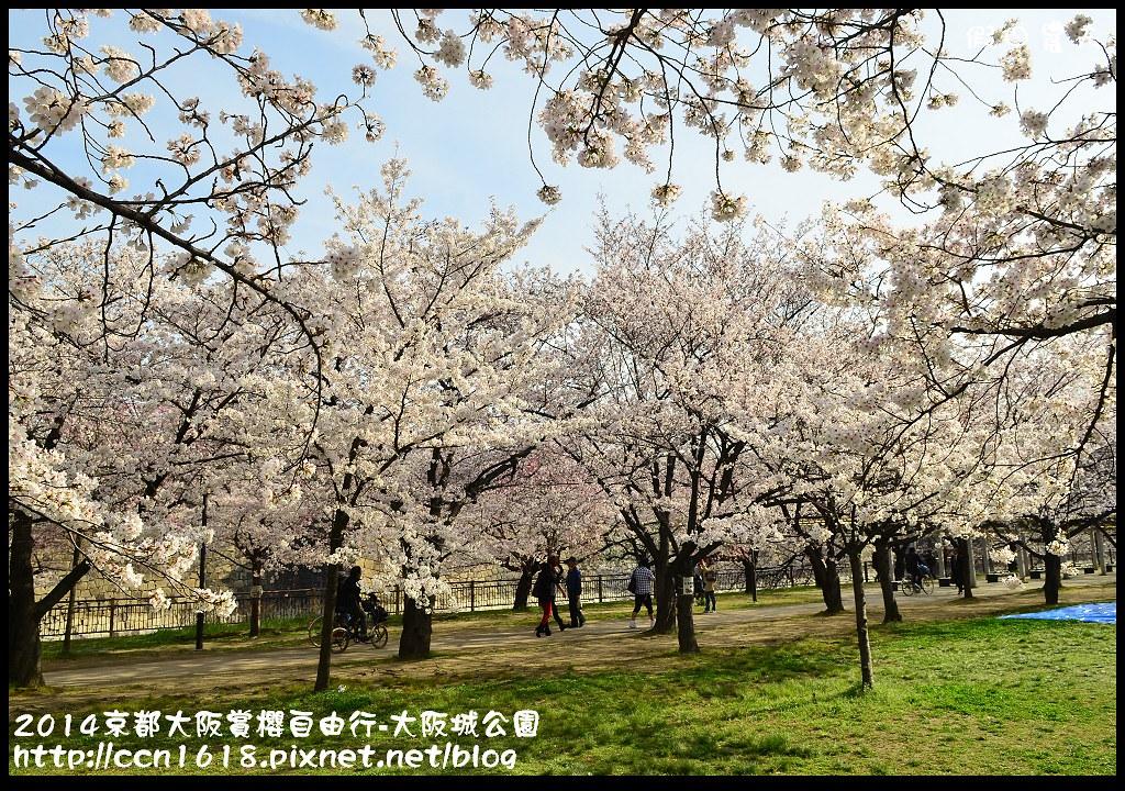2014京都大阪賞櫻自由行-大阪城公園DSC_1681